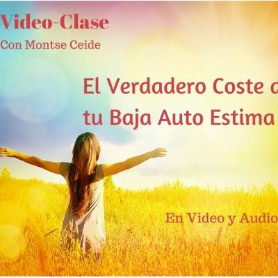 Video Clase-El Verdadero Coste de B.A-E cop